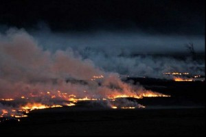 Grass fire along the Lemon Fair River, April 18, 2012. Photo by Preston Turner.