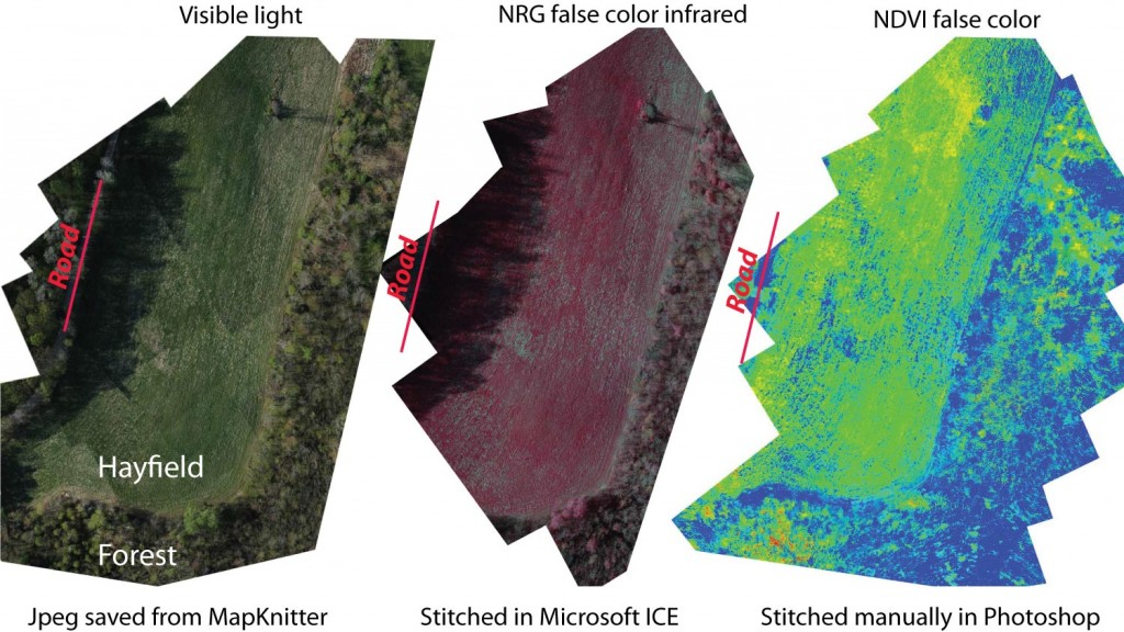 The NDVI image represents the greatest photosynthetically active biomass with the hottest colors (yellow to red).